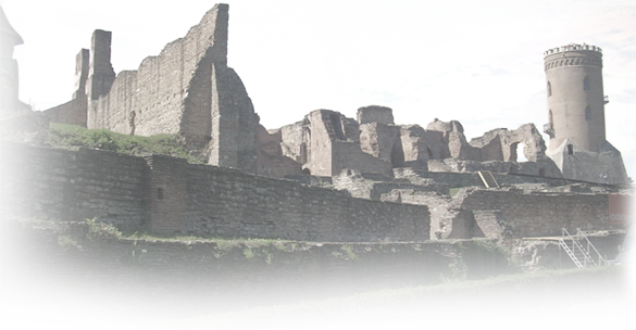 fundal_ruine_index.png